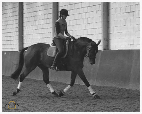 Suppling exercises are beneficial to your horse's way of going