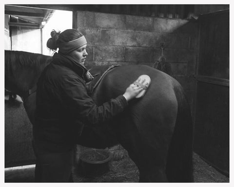 Grooming is beneficial to check your horse health