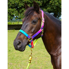 Elico Matterdale Rainbow Headcollar & Rope Set