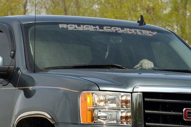 Rough Country Window Decal - SILVER