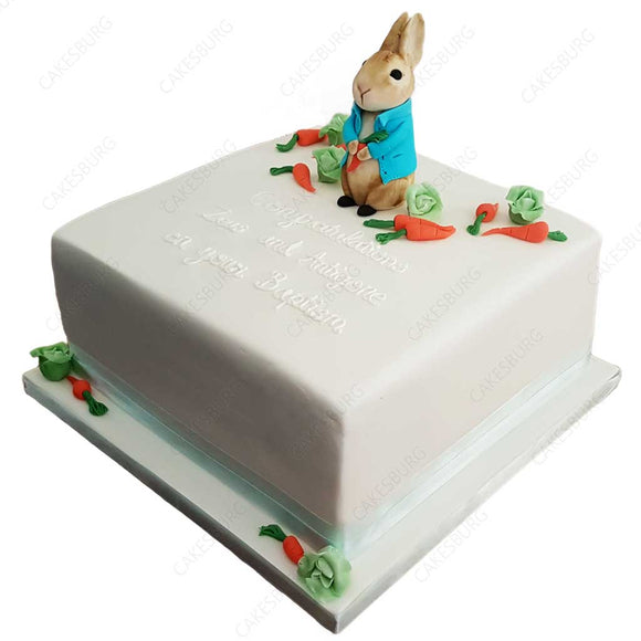 Peter Rabbit Cake #2