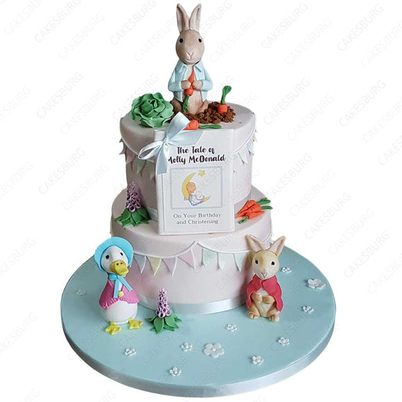Peter Rabbit Cake #3