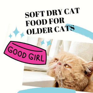 Soft Dry Food and Why It's a Top Choice for Older Cats