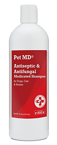 Antiseptic and Antifungal Medicated Shampoo for Pets by Pet MD, Kills the Types of Bacteria and Yeast
