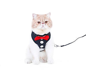 Black & White with Two Buttons Cat Harness & Leash Set