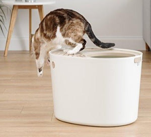 Top Entry Cat Litter Box by IRIS, Grooved Lid with Scoop  Edit alt text