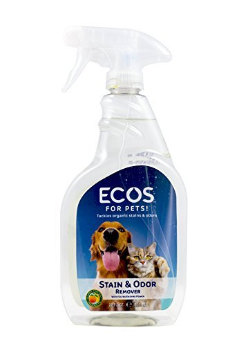 Earth Friendly Products Pet Stain&Odor Remover 22oz