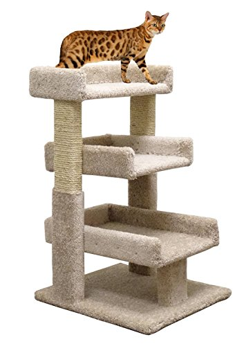Wood & Scratcher Small Cat Tree