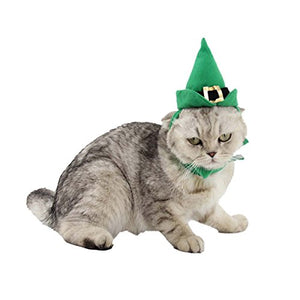 Green Cat Costume for Halloween party