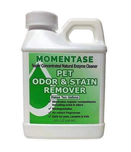 Pet Odor & Stain Remover, Makes 2 Gallons