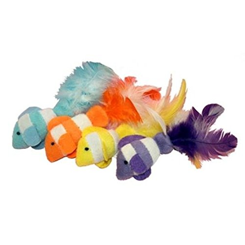 Clown Fish With Feather Tails