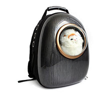 High Quality PVC Meash Fabric Deluxe Cat Carrier Backpack