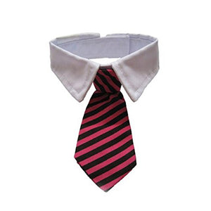 Cat Stripe Bow Tie with White Collar (Black+Red)