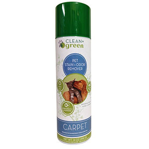Clean+Green Pet Stain+Odor Remover