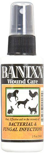 Banixx Wound Care Bacterial Fungal Infections