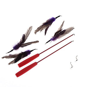 Cat Feather Telescoping Wand
