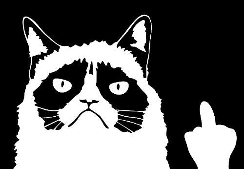 Grumpy Cat Meme Flippin' You Off Decal, 7.8 x 6.5 x 0.1 inches