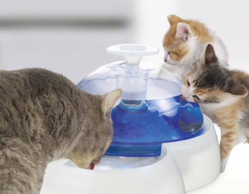 Catit Fresh Clear Drinking Fountain For Cats And Puppies Catsegory