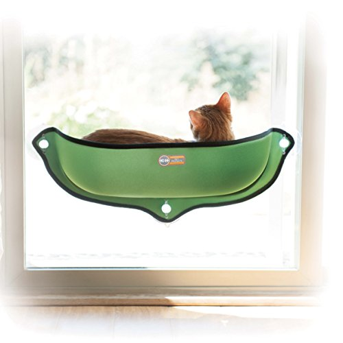 Cat Bed Mount Any Window