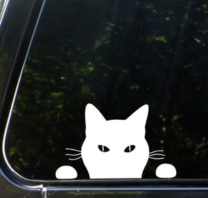 White Car Vinyl Decal Sticker - Cat Watching