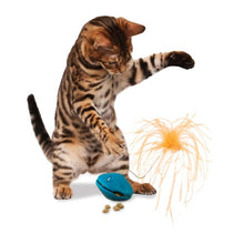 Treat Dispensing Cat Toy, Randomly Dispenses Kibble & Treats