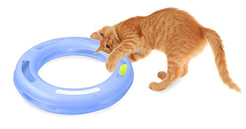 Ball-and-Bell Cat Toy