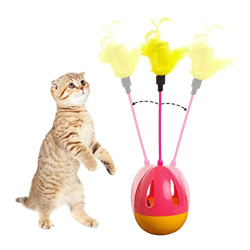 Teaser Interactive Kitten Toy