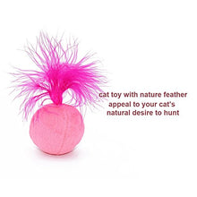 Catnip Toys in Three Colors