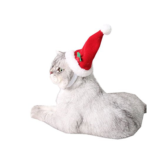 Santa Christmas Hat Costume for Pets