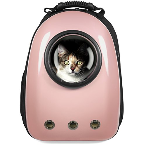 Small Bubble Window Cat Backpack