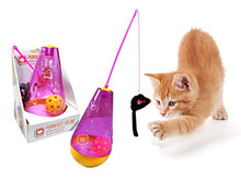 Interactive Tumbler Cat Toy