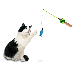 Fishing Teaser Catnip Toy for Cat Exercise