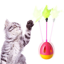 Interactive Muti-functional Cat Toy