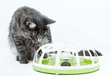 Roundabout Ball Inside Cat Toy