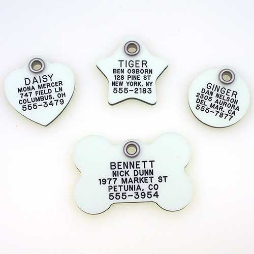 Cat ID Tag by LuckyPet - Glow In The Dark Tags - Easy to Read