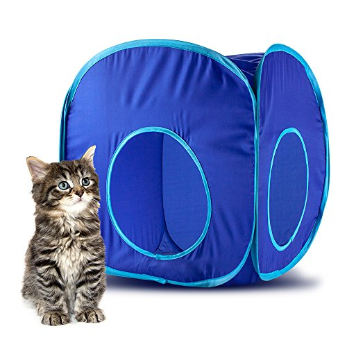 Blue Pop-Up Cat Play Cube