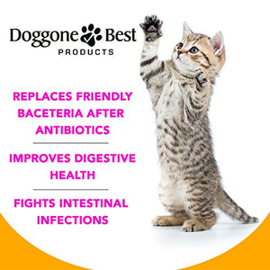 Cat Probiotics - Extra Strength Advanced Probiotics for Cats, 8oz
