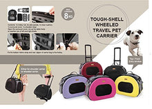 2-in-1 Tough-Shell Wheeled Collapsible Travel Pet Carrier Crate