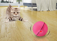 Interactive Auto Motion Cat Toy