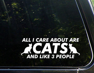 "All I Care About Are CATS And Like 3 People (8-3/4"" x 3"") Car Decal"
