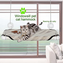 Window Perch Bed for Cats