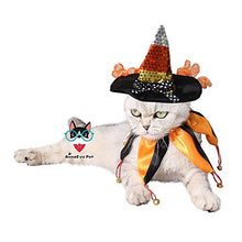 Funny Cat Costume and Hat for Halloween or Christmas