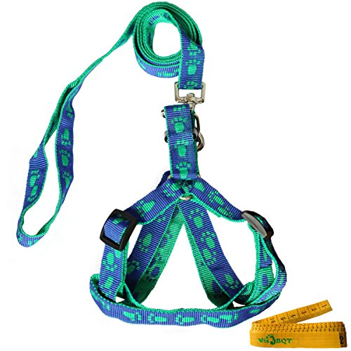 Blue and Green Adjustable Cat Harness and Leash Set, Medium