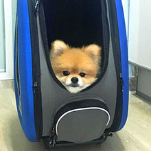 5-in-1 Pet Carrier & Backpack & CarSeat
