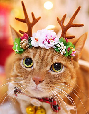 Christmas Halloween Costume for Cats Hair Accessories