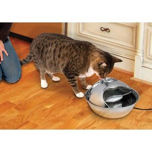 Stainless Steel Drinking Cat Fountain
