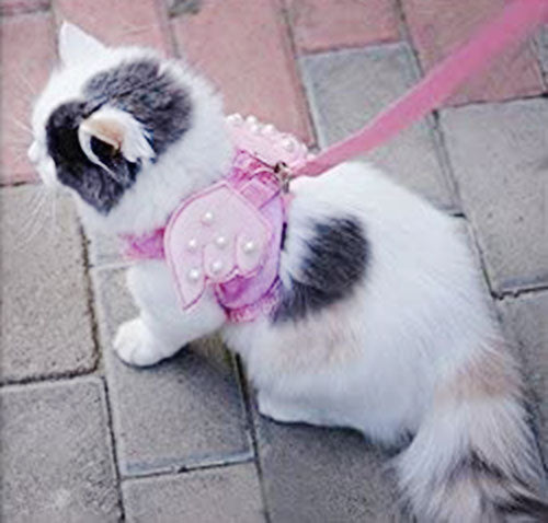 Small Pet Harness Set with Pearl Angel Wing, Leash: 49