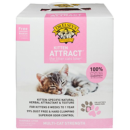 Precious Cat Kitten Attract Kitten Training Litter, 99.5% dust free