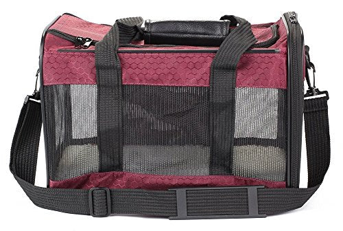Raspberry Medium Pet Carrier
