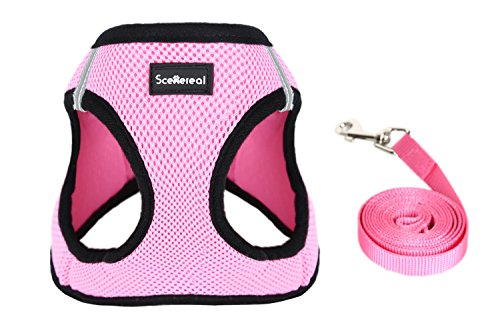 Small Dog Harness Leash Set, Pink, Small